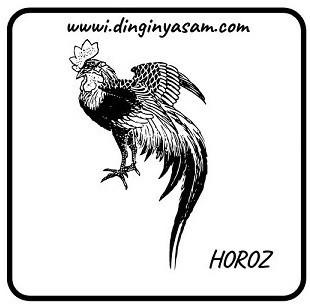cin astrolojisi horoz