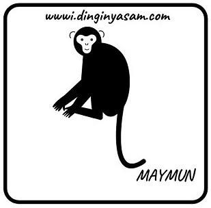 cin burclari maymun