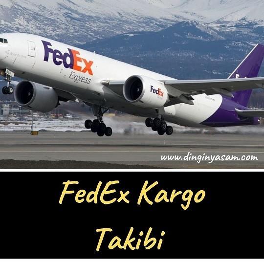 kargo takip fedex dinginyasam.com