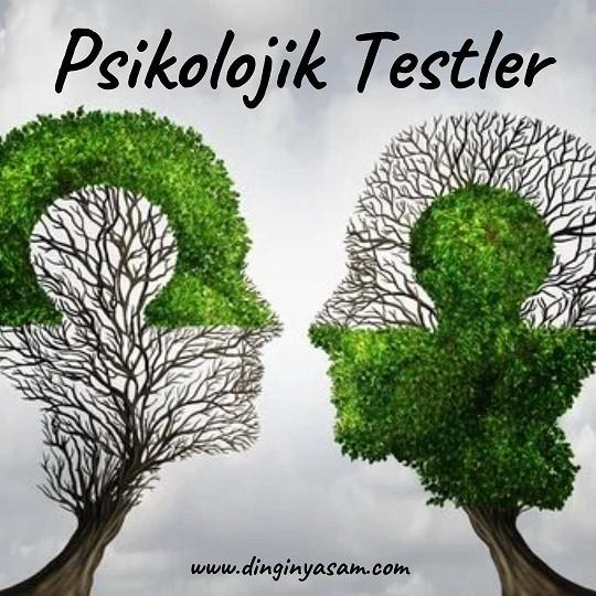 psikolojik testler resimli dinginyasam.com 9 2