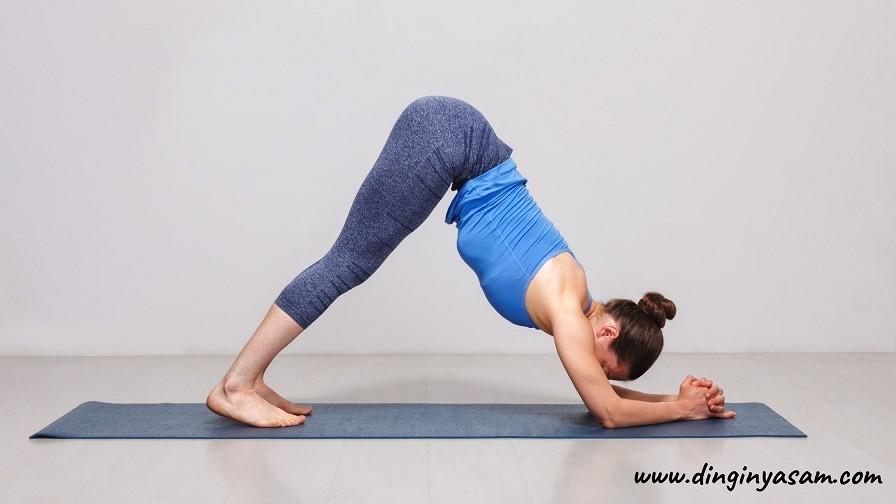 Yoga yunus Hareketi Ardha Pincha Mayurasana dinginyasam.com