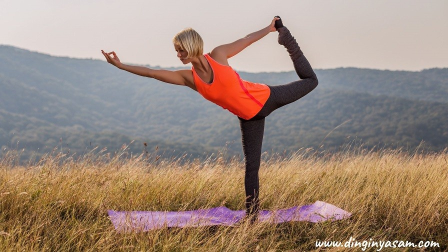 yoga dansin efendisi hareketi Natarajasana dinginyasam.com