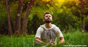 mindfullness nedir 2 dinginyasam.com
