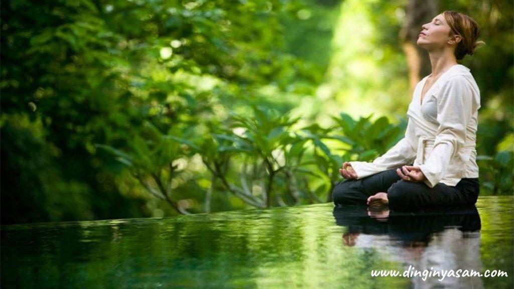 mindfullness nedir 3dinginyasam.com